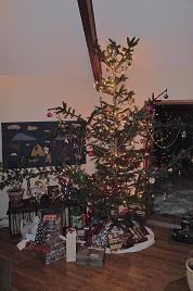 Green Christmas Tree Options